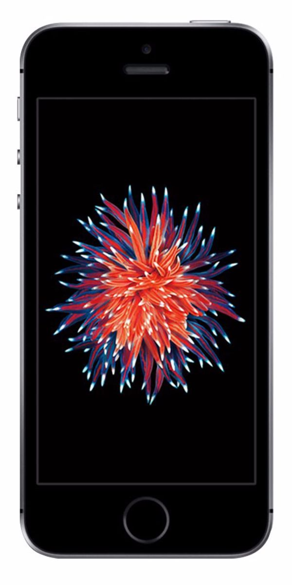 Refurbished iPhone SE 32GB Zwart Voorkant